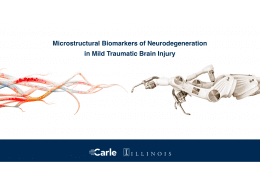 Decision Neuroscience Laboratory receives multidisciplinary grant