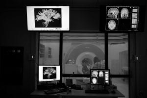 Intelligence, Learning, and Plasticity